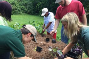 Student service beautifies retirement community