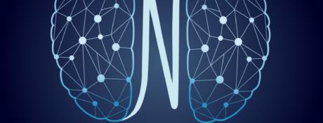 NeuroNEM logo