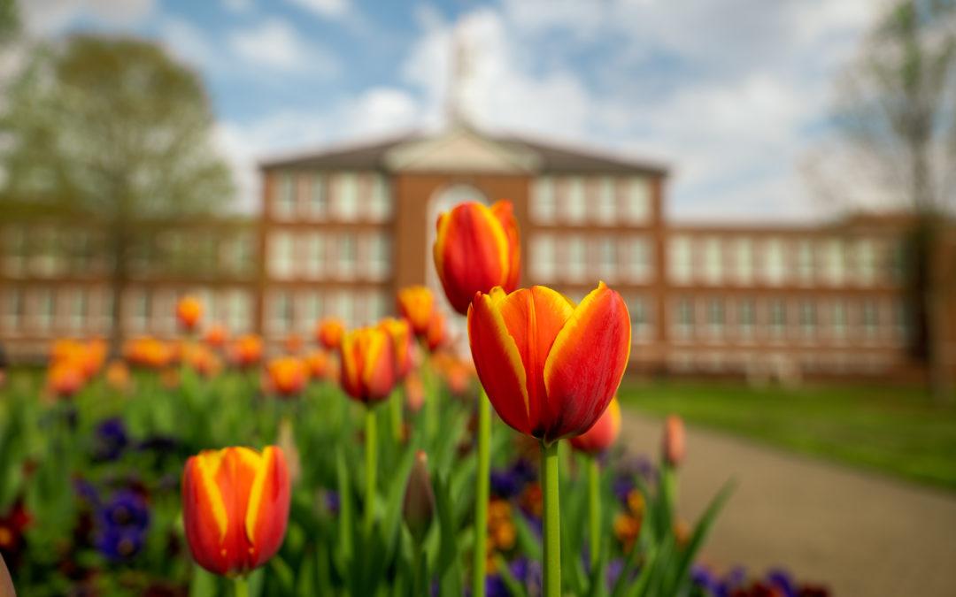 Tech ranked in Top 5 percent of universities worldwide